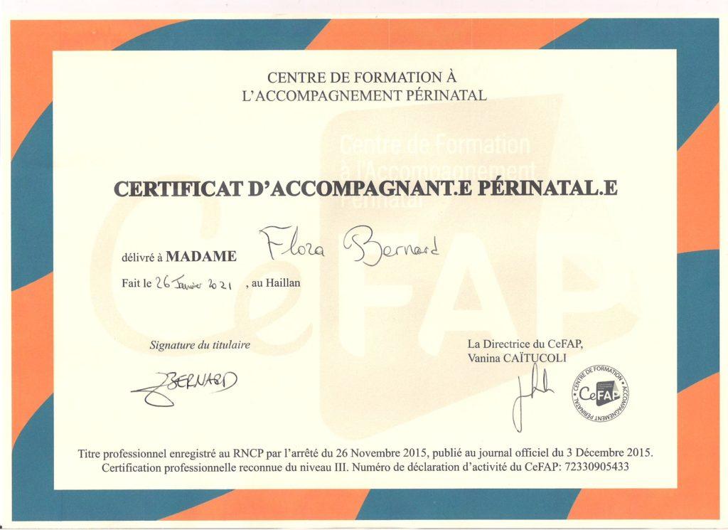 Certification CeFAP Accompagnante Périnatale